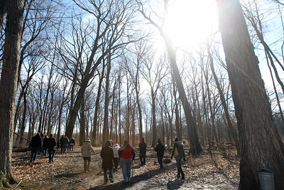 Candace H. Johnson-For Shaw Media Visitors go on a Maple Syrup Hike with Janice Aull, of Knollwood, a volunteer nature guide, at Ryerson Woods in Riverwoods.(3/11/18)