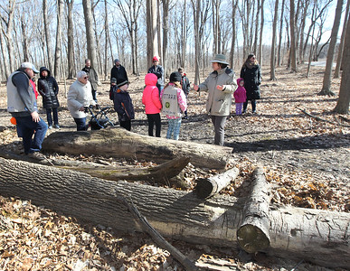 Candace H. Johnson-For Shaw Media Janie Aull, of Knollwood, (on right) a volunteer nature guide, leads a group during a Maple Syrup Hike at Ryerson Woods in Riverwoods.She stopped the group to talk about how to roll a log and to be careful of the creatures laying underneath.(3/11/18)
