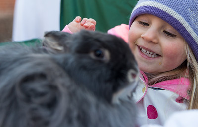 Whitney Rupp for Shaw Media Eve Baker, 2, Crystal Lake, gets up close with a bunny at Living Waters Lutheran Church during the church's annual Easter Egg Hunt Sunday, March 18.