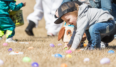 Whitney Rupp for Shaw Media Tyler Schneider, 2, Lake in the Hills, collects eggs Sunday at Living Waters Lutheran Church during the annual Easter Egg Hunt.