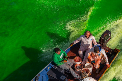 Whitney Rupp for Shaw Media Current from a boat carrying workers with orange dye helps to mix the dye and turn the Fox River green for St. Patrick's Day Saturday, March 17 in McHenry.