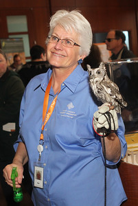 Candace H. Johnson-For Shaw Media Nan Buckardt, director of education, greets visitors with an adult eastern screech owl during the Grand Opening of the Lake County Forest Preserves Dunn Museum on Winchester Road in Libertyville.(3/24/18)