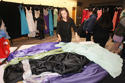 Candace H. Johnson-For Shaw Media Patty Gmitrovic, of Island Lake, children's programming assistant, sorts through donated prom dresses for girls to try on at the Prom Dress Shoppe at the Wauconda Area Library.The library collected two hundred dresses to be given away.