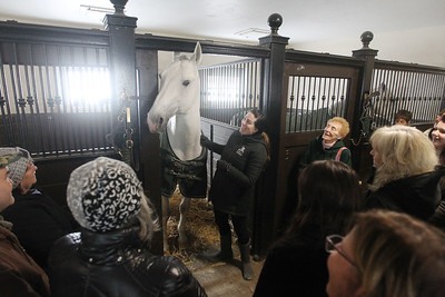 "Candace H. Johnson-For Shaw Media Emily Riccio, program coordinator, talks about a Lipizzan horse named, Maestoso (Legeny) Anita, also known as ""Cookie,"" during the Tempel Lipizzans Behind-the-Scenes-Tour at Tempel Farms in Old Mill Creek. The next tours are on April 13th and May 11th. (3/9/19)"