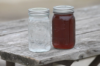 Candace H. Johnson-For Shaw Media Bottles of sap and maple syrup were on display after a maple syrup hike at Ryerson Woods in Riverwoods. Sap is mostly water and two percent is sugar which is boiled down to make maple syrup. It takes 40 gallons of sap to make 1 gallon of maple syrup. (3/24/19)