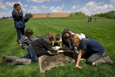 Mike Greene - mgreene@shawmedia.com Chaperone Janette Keller watches over a group of Hannah Beardsley Middle School students searching through a silt screen for critters found in a stream behind Prairie Ridge High School Tuesday, May 8, 2012 in Crystal Lake. The event, organized by seventh grade biology teacher Carol Sevrey and Friends of the Fox, gave students a chance to gain hands-on experience and apply skills learned in the classroom. Students at the event measured the physical, chemical, and biological conditions at sites along the stream.
