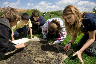 Mike Greene - mgreene@shawmedia.com Hannah Beardsley Middle School student Ashley Andrey (right) and her classmates search through a silt screen collected in a stream behind Prairie Ridge High School looking for critters present in the waterbed Tuesday, May 8, 2012 in Crystal Lake. The event, organized by seventh grade biology teacher Carol Sevrey and Friends of the Fox, gave students a chance to gain hands-on experience and apply skills learned in the classroom. Students at the event measured the physical, chemical, and biological conditions at sites along the stream, with results aiding research by Friends of the Fox.