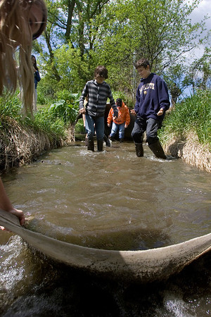 Mike Greene - mgreene@shawmedia.com Hannah Beardsley Middle School students Jacob Keller and Neal Schnoor trudge through a stream while trying to catch critters in a silt screen Tuesday, May 8, 2012 in Crystal Lake. The event, organized by seventh grade biology teacher Carol Sevrey and Friends of the Fox, gave students a chance to gain hands-on experience and apply skills learned in the classroom. Students at the event measured the physical, chemical, and biological conditions at sites along the stream.