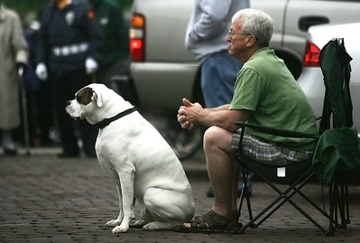 Kyle Grillot - kgrillot@shawmedia.com   Ron Chapman of Woodstock and his dog Max the boxer wait for the start of the Woodstock Memorial Day parade at Woodstock Square Monday, May 27, 2013.