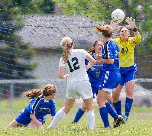 Rosary's Lauren Frasca (00) defends the goal against a header by Kaneland's Madison Jurcenko (12) during the Rosary Girls 2A Regional Final at Rosary High School in Aurora, IL on Saturday, May 24, 2014 (Sean King for Shaw Media)