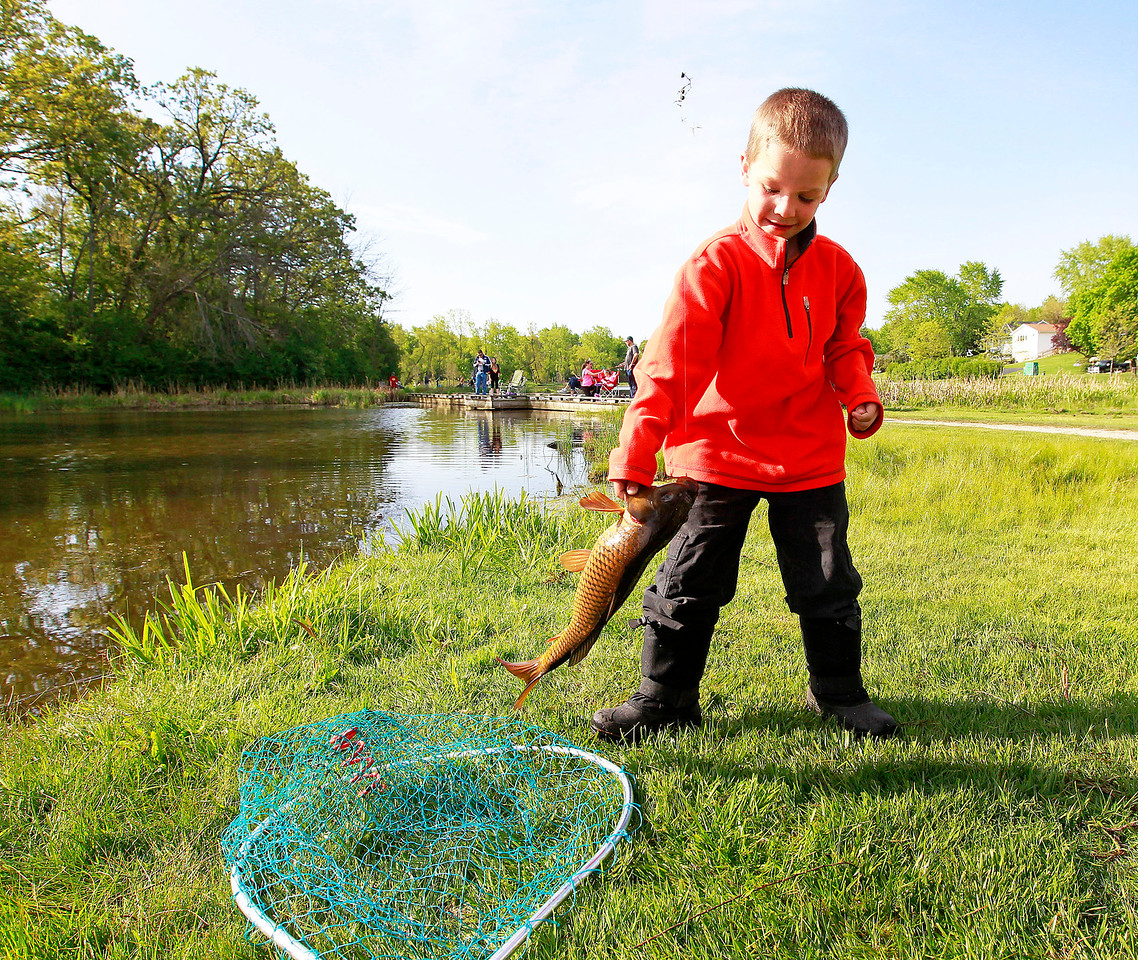 Candace H. Johnson Reese Mock, 6, of Lindenhurst takes the fish he caught out of the net during the Lindenhurst Park District's annual Carp Fishing Derby at John Jenega Memorial Park in Lindenhurst.