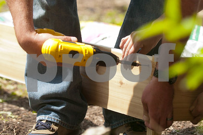 Screws are driven into Cedar boards to make a 4x8' footprint that will outline the garden. David Toney for Shaw Media