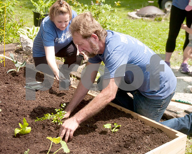 Ted Lowe tidies up around some of the vegetables that were planted Saturday during the Garden Works Project that was done on Saturday. David Toney for Shaw Media