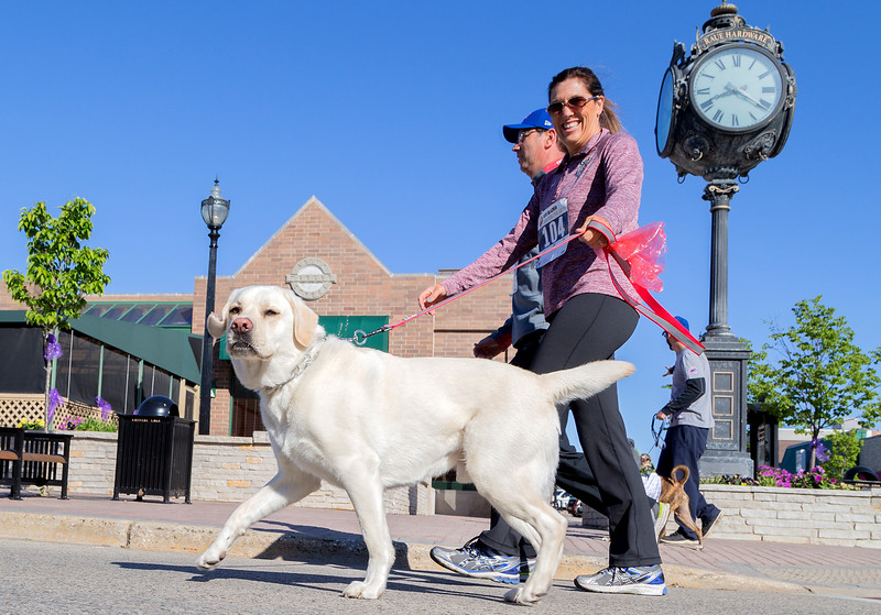 Ken Koontz – For Shaw Media  Tracey Annen enjoys a walk with her dog at the 20th annual Bob Blazier Run for the Arts 5K Run/Walk, Sunday, May 7, 2017 in Crystal Lake.
