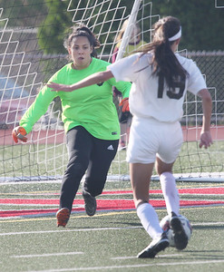 Candace H. Johnson-For Shaw Media Round Lake's Giselle Raygoza looks to stop a shot on goal by Carmel's Skyler Thomas in the first half during the Class 3A regional semifinal game at Mundelein High School. Carmel won 5-0.(5/15/18)
