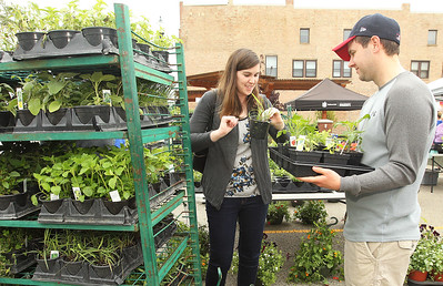 Candace H. Johnson-For Shaw Media Maggie and Richard Day, of Grayslake pick out vegetable plants for sale by Geneva Lakes Produce at the Spring Grayslake Farmers Market on Center Street in downtown Grayslake. The Spring Market runs on Saturdays through May 26th from 10-2:00 pm. and the Summer Market runs on Wednesdays May 30- September 26 from 3-7:00 pm. (5/19/18)