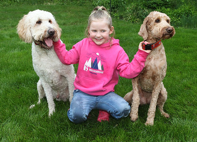 Candace H. Johnson-For Shaw Media Harper Jane Kubiak, 6, of Lake Forest holds on to her dogs, Harry Barker and Rosie Star, as she wears her Brenkenridge Colorado sweatshirt she received when she went on a family skiing trip through Make-A-Wish in the backyard of her home in Lake Forest.(5/21/18)