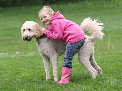 Candace H. Johnson-For Shaw Media Harper Jane Kubiak, 6, with her dog, Harry Barker, in the backyard of her home in Lake Forest.(5/21/18)