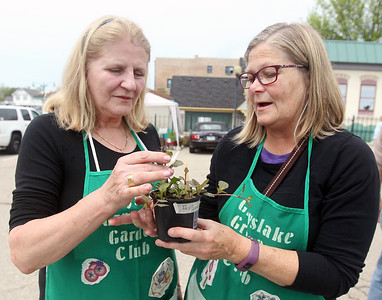 Candace H. Johnson-For Shaw Media Elizabeth Campobasso talks to Karlene Runge, both of Grayslake about a groundcover shade plant she was taking home during the Grayslake Greenery Garden Club Annual Plant Sale in the parking lot close to the Village Hall in Grayslake. Both Campobasso and Runge are members of the garden club hosting the event. (5/18/19)