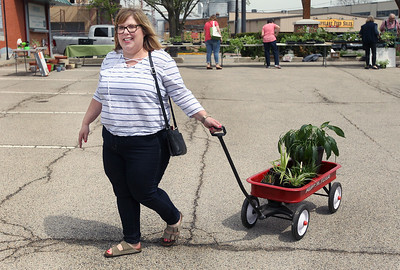 Candace H. Johnson-For Shaw Media Holly Pauley, of Grayslake pulls her wagon full of plants she picked out during the Grayslake Greenery Garden Club Annual Plant Sale in the parking lot close to the Village Hall in Grayslake. (5/18/19)