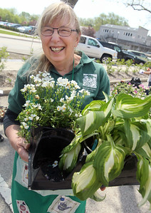Candace H. Johnson-For Shaw Media Julie Prentice, of Grayslake carries some plants as she helps out during the Grayslake Greenery Garden Club Annual Plant Sale in the parking lot close to the Village Hall in Grayslake. (5/18/19)