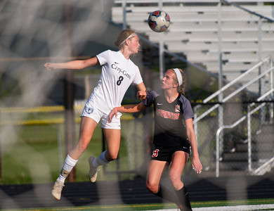 Cary Grove's Avery Nielson defends the goal against Barrington's Juliana Moreno early in the second half of the 3A Guilford soccer sectional in Rockford on Friday, May 24, 2019. Randy Stukenberg for Shaw Media