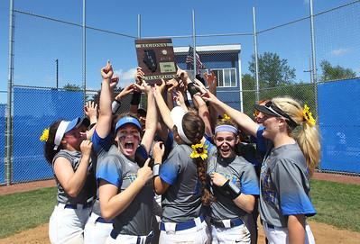 Candace H. Johnson-For Shaw Media The Warren girls softball team holds up their plaque as they celebrate their win against Grayslake North during the Class 4A regional final at Warren Township High School. Warren won 4-1. (5/25/19)