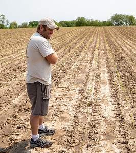 Brandon Walter looks over his rain-soaked fields Friday, May 31, 2019 in Harvard.  KKoontz- For Shaw Media