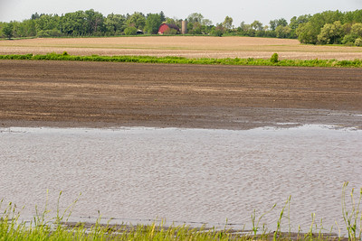Water stands in farm fields in Harvard, IL after the wettest May on record. Photo taken Friday, May 31, 2019. KKoontz – For Shaw Media
