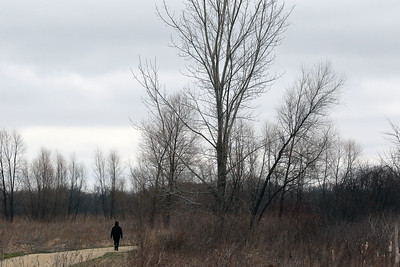 Candace H. Johnson-For Shaw Media Lupe Lara, of Waukegan goes for a walk on the trail at the Rollins Savanna Forest Preserve in Grayslake.The forest preserve has 5.5 miles of gravel trail.The main entrance is located on Washington Street in Grayslake.