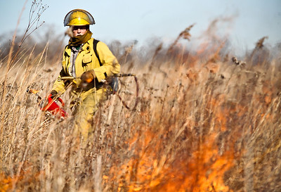 Josh Peckler - Jpeckler@shawmedia.com Ken Williams with the Davey Resource Group keeps watch over a prescribed burn at The Sanctuary of Bull Valley housing community in Woodstock Tuesday, November 13, 2012.