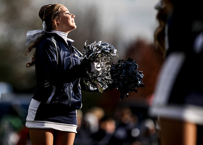 Sarah Nader- snader@shawmedia.com Cary-Grove cheerleaders cheer on the football team during Saturday's second-round Class 6A football playoff game against Boylan November 9, 2013. Cary-Grove was lost, 10-17.