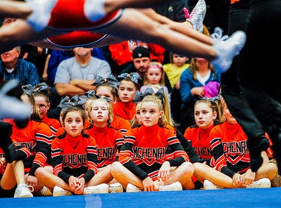 Kyle Grillot - kgrillot@shawmedia.com   Girls watch as the varsity cheer and pom teams perform during the first Pom and Cheer Showcase at McHenry High School West Campus Sunday. All 11 of McHenry Junior Warriors Pom and Cheer teams take turns in the spotlight, raising funds for the nonprofit McHenry Junior Warriors Pom and Cheer organization.