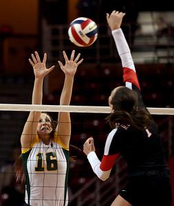 Sarah Nader - snader@shawmedia.com Crystal Lake South's Carly Nolan jumps to block the ball during Friday's IHSA Class 4A semifinal against Benet at Illinois State University in Normal, IL November 15, 2013. Crystal Lake South lost, 0-2.