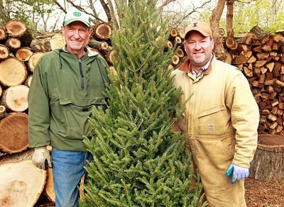 LCJ_1201_Sullivans_Tree_FarmJ