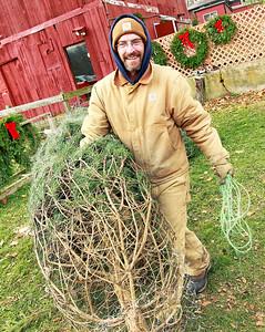 LCJ_1201_Sullivans_Tree_FarmK