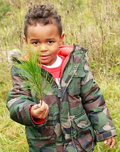 LCJ_1201_Sullivans_Tree_FarmI