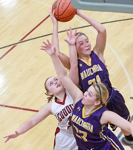 Candace H. Johnson-For Shaw Media Wauconda's Allie Tylka (#21) pulls down a rebound with the help of teammate, Mallory Carver, (#33) against Antioch's Taylor Feltner in the fourth quarter at Antioch Community High School.