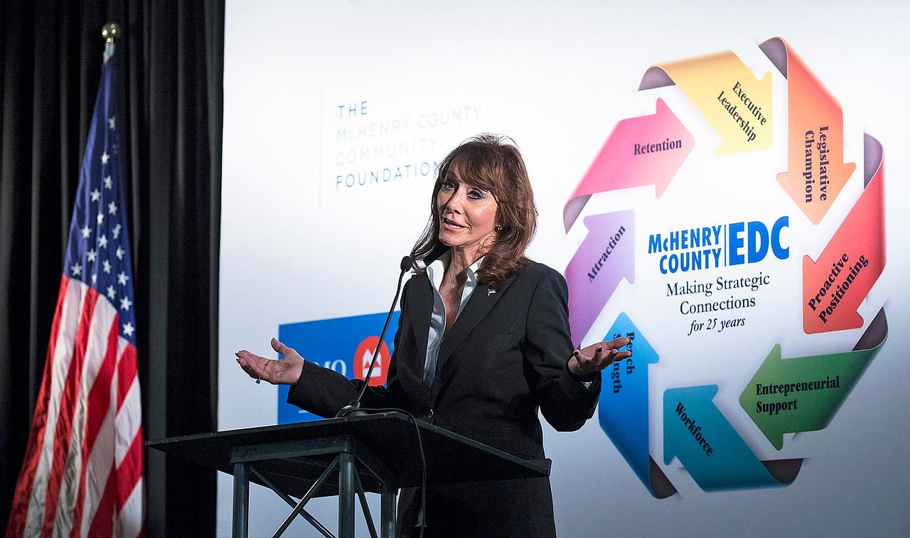 Keynote speaker Diane Hendricks, of ABC Supply Co. speaks at the McHenry County Economic Development Corp. annual dinner at the Holiday Inn on Tuesday, November 7, 2017 in Crystal Lake, Illinois. John Konstantaras photo for Shaw Media
