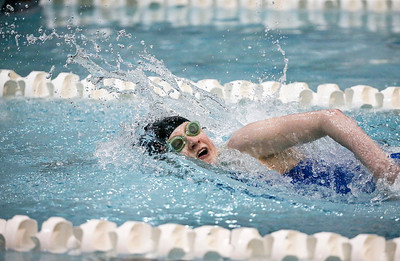 Makayla Nietzel, Crystal Lake Coop, swims to one of her four championships in the 200-yard Freestyle for students with Physical/Visual Disabilities during the IHSA Swimming and Diving Championships at New Trier High School on Saturday, November 18, 2017 in Winnetka, Illinois. John Konstantaras photo for Shaw Media