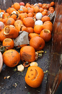 Candace H. Johnson-For Shaw Media Pumpkins were thrown into a dumpster to be used for compost during the Mundelein Park & Recreation District's Annual Pumpkin Drop at Keith Mione Community Park in Mundelein. The pumpkins were sent to Midwest Organics Recycling, out of Wauconda.(11/4/18)