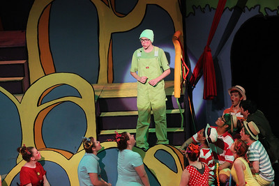 "Candace H. Johnson-For Shaw Media The Grinch (Owen Donahue) sings, ""Here on Who,"" during Seussical The Musical at Wauconda High School. (11/17/18)"