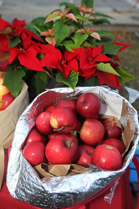 Candace H. Johnson-For Shaw Media Ida Red apples and pointsettias were for sale by Rancho Los Compadres at the Kris Kringle Winter Market at Community Garden Green during Fox Lake Festival of Lights. (11/24/18)