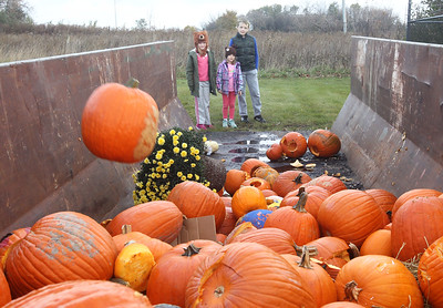 Candace H. Johnson-For Shaw Media Adalyn Krueger, 7, of Gurnee and her siblings, Briana, 5, and Patrick, 10, watch pumpkins get thrown into a dumpster to eventually be made into compost during Pumpkin Recycling & Fall Fun Day at Woodland Intermediate School in Gurnee. The pumpkins will go to Midwest Organics Recycling in McHenry to make compost. (11/2/19)