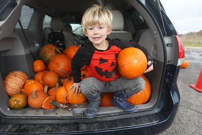 Candace H. Johnson-For Shaw Media Liam Moore, 7, of Gages Lake gets ready to bring his family's pumpkins to a dumpster to be turned into compost during Pumpkin Recycling & Fall Fun Day at Woodland Intermediate School in Gurnee. The pumpkins will go to Midwest Organics Recycling in McHenry to make compost. (11/2/19)