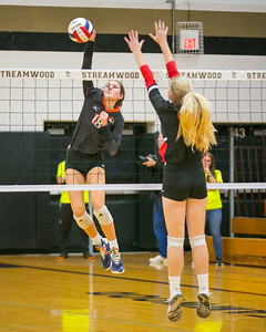 hspts_1108_vball_wws_hunt_willis, emily.JPG