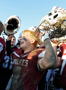 Prairie Ridge Wolves' Ty Baker (4) celebrates as the Wolves defeated the Cary-Grove Trojans 14-13 in a Class 6A IHSA football quaterfinal playoff game on Saturday, November 16, 2019, in Crystal Lake, Ill.