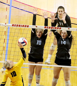 hspts_1116_Vball_Sterling_JolietCatholic