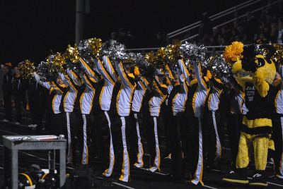 The Hinsdale South poms team and the hornets mascot root on their team during a playoff game at Oak Forest on Friday, Oct. 26, 2012. Staff photo by Matthew Piechalak  |  Buy this photo at snapshots.mysuburbanlife.com/1557279