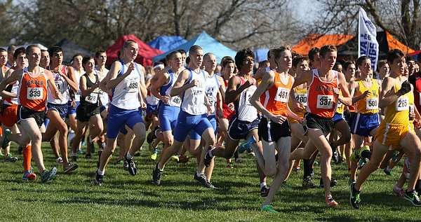 Jeff Krage – For the Kane County Chronicle<br /> The start of the boys race during Saturday's IHSA 3A cross-country sectional at Leroy Oakes Forest Preserve.<br /> St. Charles 10/27/12